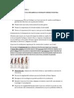 PARCIAL DE ENFOQUES 1