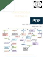 GINECO MAPAS 4
