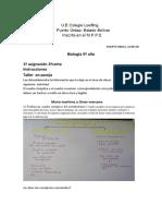 asignacion biologia metabolismo