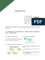 SEM6_1_Terminos Algebraicos