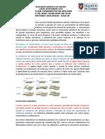 Fundamentos da Geologia_Aula 08
