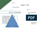 activity inglish pyramid food