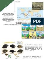 Fiche activite 2 - Documents POSTES