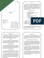 Tesis y tesinas (Diptico)