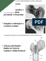 OSTEOARTICULAR ro