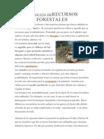 DEFINICIÓN DERECURSOS FORESTALES.docx