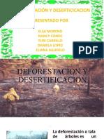 DEFORESTACION Y DESERTIFICACION