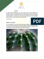 M2C2.-Otras-Reglas-en-Fotografia.pdf