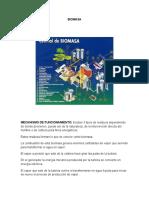 infografia biomasa