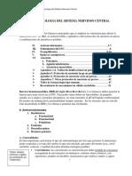 (Villar) Apuntes de Farmacologia del SNC