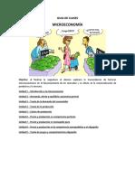 MICROECONOMIA - GUIA DE CLASES