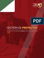 Gestion de Proyectos-FSM