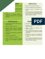 Matriz DOFA Idea
