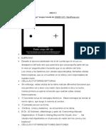 ANEXO 2 SENSOPERCEPCIÓN PDF COMPLETO