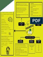 Procesos-psicolingüísticos-de-la-adquisición-y-desarrollo-del-lenguaje.-1