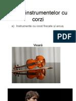 Clasa-a-V-a-Fisa-nr.-6-Instrumente-cu-corzi