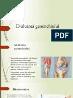 Evaluarea-genunchiului-