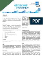 L'élevage de lapin_Université de Montréal.pdf