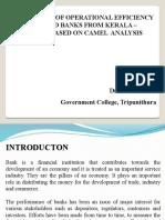 Camel analysis ppt - Copy