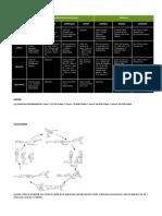 avanzult1_programa_de_entrenamiento_nivel_avanzado_distancia_ultra_trail_1_entrega.pdf