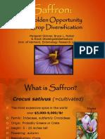 SaffronGoldOppNov72016