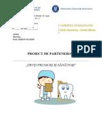 PROIECT DE PARTENERIAT GRADI - STOMATOLOG. - GRUPA MARE GPP13docx