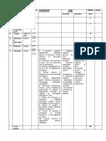 raport model I