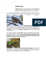 10 Aves Dominicanas.docx