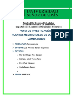 plantas.m.r.l.docx