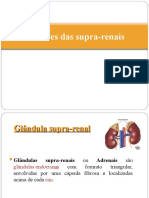 1e754182f Tumores das suprarrenais - Cópia