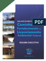 resumo_executivo (2).pdf