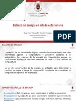 Clase 5. Balance de Energía en Estado Estacionario