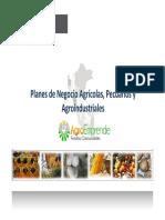 elaboracion_planes_negocio_12 agosto10.pdf