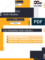 GARANTIAS IDIVIDUALES RIGO