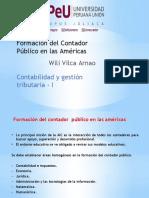 tarea - formacion del contador público en las americas