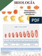 1RA CLASE EMBRIO - Generalidades , Gametogenesis y Fecundación