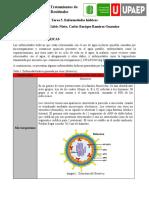 Tarea 5. Enfermedades Hídricas - Juan Camilo Galvis y Carlos Ramirez.docx