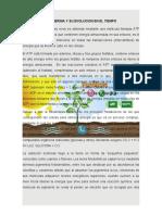 LA ENERGIA Y SU EVOLUCION EN EL TIEMPO ensayo