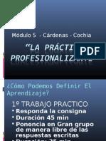 la Práctica Profesionalizante