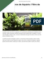 Tipos de Filtros de Aquário_ Filtro de Plantas