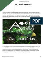 Cianobactérias, um incômodo perigoso