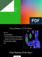 clase 25 de mayo septimo básico biología