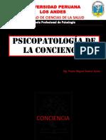PSICOPATOLOGÍA DE LA CONCIENCIA.pdf