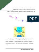 rev.SINAPSE-texto(2)