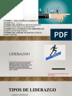 Ramírez_Carla_Presentación_ejecutiva.pptx