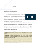 Informe (1) BCM