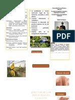TRIPTICO PESTICIDAS TOXICOLOGIA.docx
