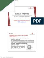 CARGAS INTERNAS.pdf