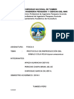UNIVERSIDAD NACIONAL DE TUMBES SÁBALO