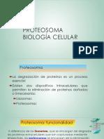 PROTEOSOMA